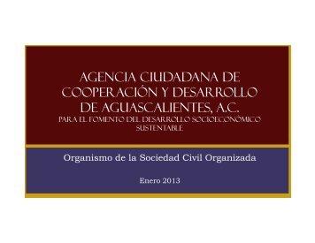 130101_ACCDAgs-2013