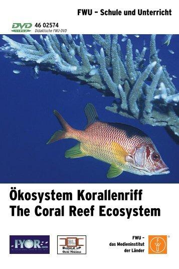 Ökosystem Korallenriff The Coral Reef Ecosystem - FWU