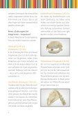 Gebisstypen bei Säugetieren - FWU - Seite 4