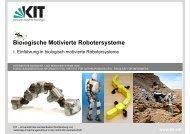 Biologisch Motivierte Robotersysteme - FZI