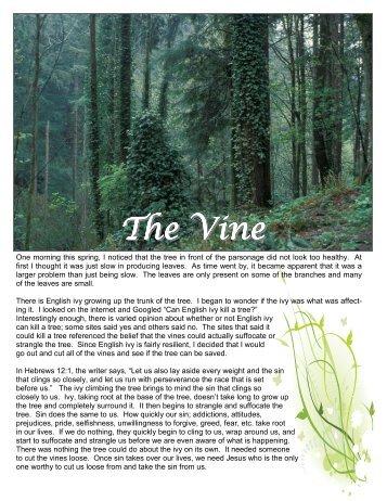 Summer 2012 Vine Online