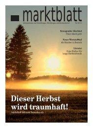 Ausgabe 03/2011 - Markt Unterthingau