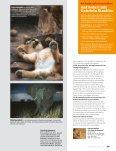 die Seele der Savanne - Gabriela Staebler, Wildlife-Photography - Seite 6