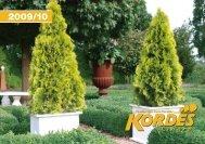 2010 - Kordes-Jungpflanzen