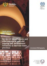 South Africa SME Observatory Review of the efficiency