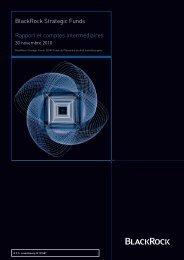 BlackRock Strategic Funds Rapport et comptes ... - Fundinfo