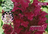 Catalog 2010/11 - Kordes-Jungpflanzen