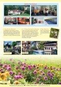 mitten im Schwarzwald! - SKAN-TOURS Touristik International GmbH - Seite 3