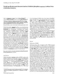 Partial purification and characterization of dolichol ... - Cinvestav