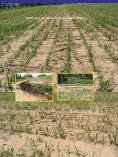 Bodenbearbeitung und CO2-Problematik - Land-Impulse - Seite 3
