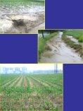 Minmalbodenbearbeitung- Krankheits - Land-Impulse - Seite 3