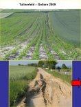 Minmalbodenbearbeitung- Krankheits - Land-Impulse - Seite 4