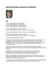 Zusammenstellung von 2005 bis 2008 - Tischtennis beim SV ...