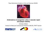 Ambivalence of progenitor cells in vascular repair and plaque stability
