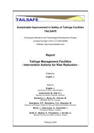 Report Tailings Management Facilities - Intervention Actions for Risk