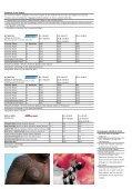 SÜDSEE Französisch Polynesien - Stohler - Seite 4