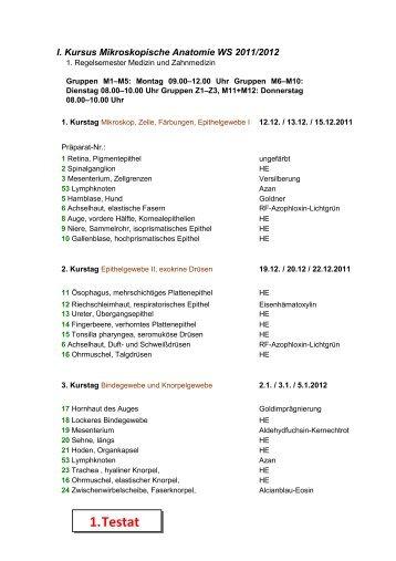 Anatomie-Skript 4.Testat