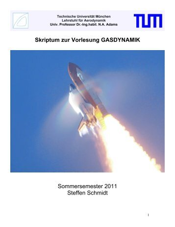 Skriptum zur Vorlesung GASDYNAMIK Sommersemester 2010 ...