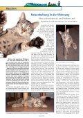 Das Thema - Arnsberger Wohnungsbaugenossenschaft eG - Page 4
