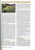 Fallopia japonica - ILZ - Page 3
