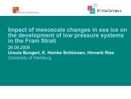 Impact of mesoscale changes in sea ice on the development of low ...