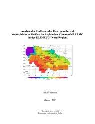 Thema: Analyse des Einflusses des Untergrundes ... - Model & Data