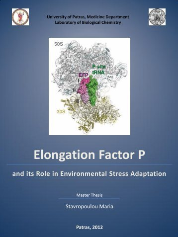 Elongation Factor P and its Role in Environmental Stress ... - Nemertes