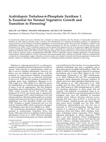 Arabidopsis Trehalose-6-Phosphate Synthase 1 ... - Plant Physiology