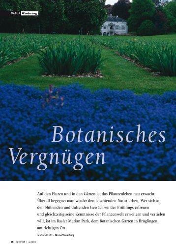 26-29 Botanisches - Natürlich