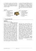 Gemeüzae - Infa - Gemeinde St. Martin bei Lofer - Seite 7