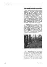 Auszug Seite 14 und 15 - Gnor