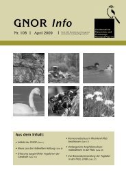 GNOR Info Heft Nummer 108