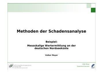 Methoden der Schadensanalyse Beispiel: Mesoskalige