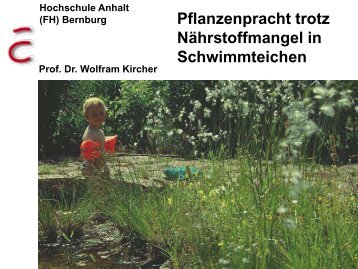 Prof. Dr. Wolfram Kircher