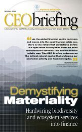 Demystifying materiality - UNEP Finance Initiative