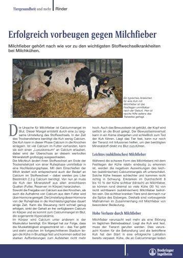 Erfolgreich vorbeugen gegen Milchfieber - Tiergesundheit und mehr