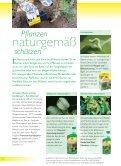 Naturgemäße Gartentipps für Herbst und Winter - Neudorff - Seite 6