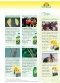 Naturgemäße Gartentipps für Herbst und Winter - Neudorff - Seite 7