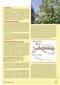 Der pflanzliche Arzneischatz - phytotherapie.co.at - Seite 5