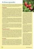 Der pflanzliche Arzneischatz - phytotherapie.co.at - Seite 6