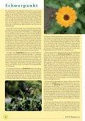 Der pflanzliche Arzneischatz - phytotherapie.co.at - Page 6