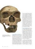 Knochenarbeit - Carl Zeiss - Seite 5
