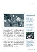 Knochenarbeit - Carl Zeiss - Seite 6