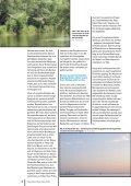 Link - Wasserland Steiermark - Seite 6