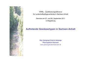 Auftretende Gewässertypen in Sachsen-Anhalt