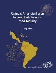 cultivo_quinua_en