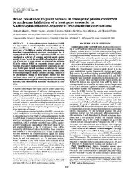 Broad resistance to plant viruses in transgenic plants conferred S ...
