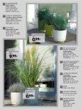 zum PDF - Gartencenter Streb - Seite 6