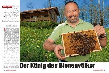 Massensterben Bienen sind seine Leidenschaft. Und viel ... - ZwygArt