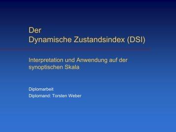 Der dynamische Zustandsindex (DSI)